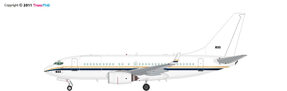 政府/軍用飛機 7004